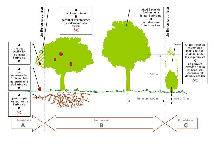 R gles de plantation et d 39 entretien des v g taux commune for Reglementation entretien jardin